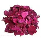 Цветки шиповника