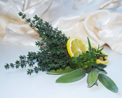 укрепить здоровье травами