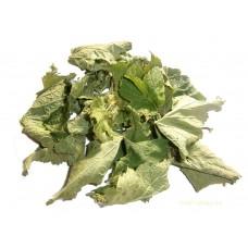 сушёный лист смородины
