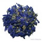 Цветы мальвы цена