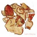 Мухомор красный сушёный
